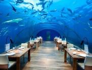 Nem mindennapi látványt nyújt a világ első vízalatti étterme