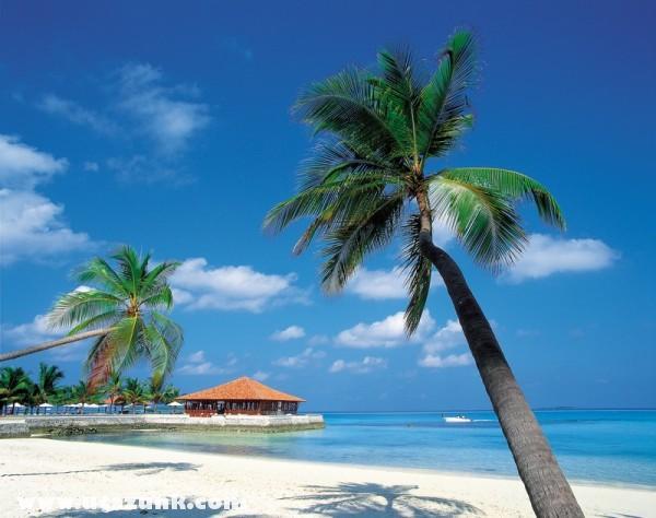 A nyugalon szigete