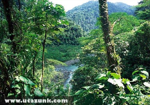 Braulio Carrillo Nemzeti Park