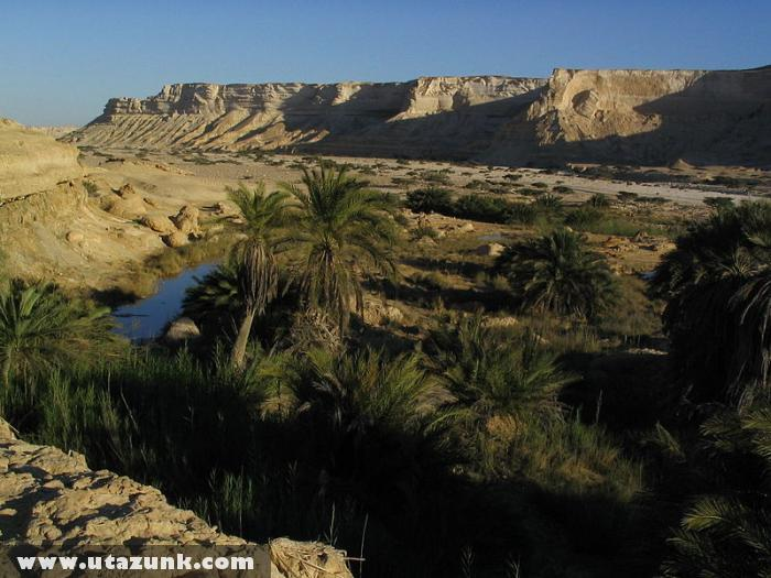 Oázis valahol Ománban