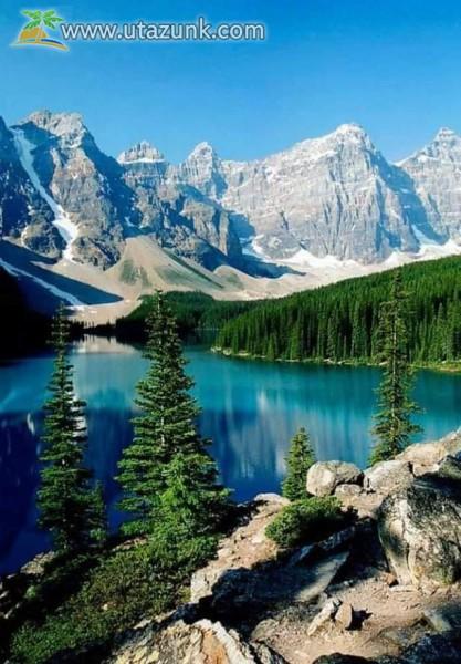 Völgyben erdő, tó