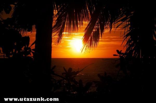 Trópusi naplemente