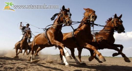 Bugaci lovak