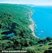 Dán tenger