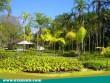 Zöldben szép az élet